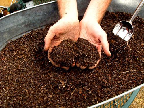Humus mit Bio-Kohle vom Noah Ofen